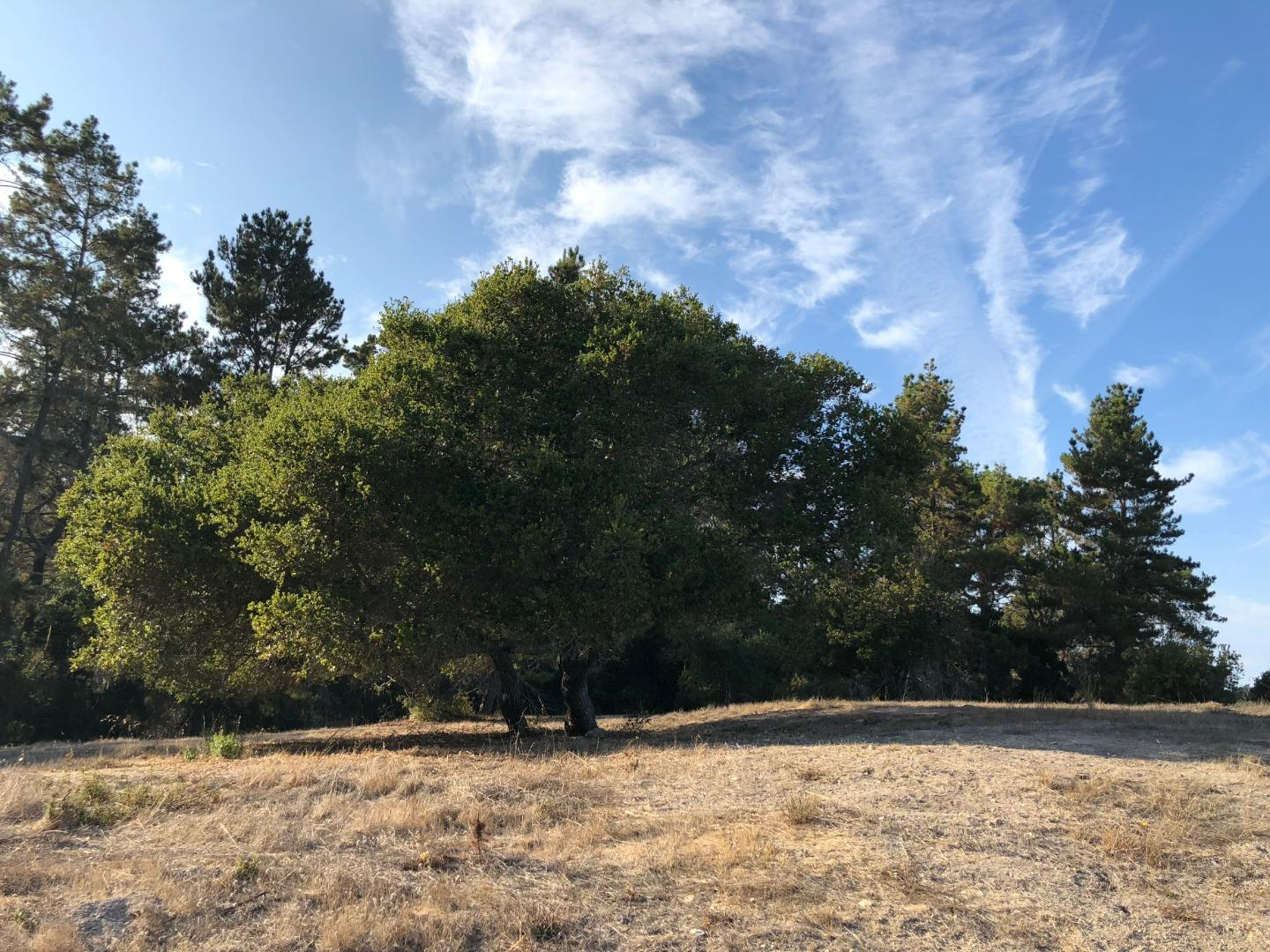 Property for sale at 7765 Paseo Venado (Lot 85), Monterey,  California 93940