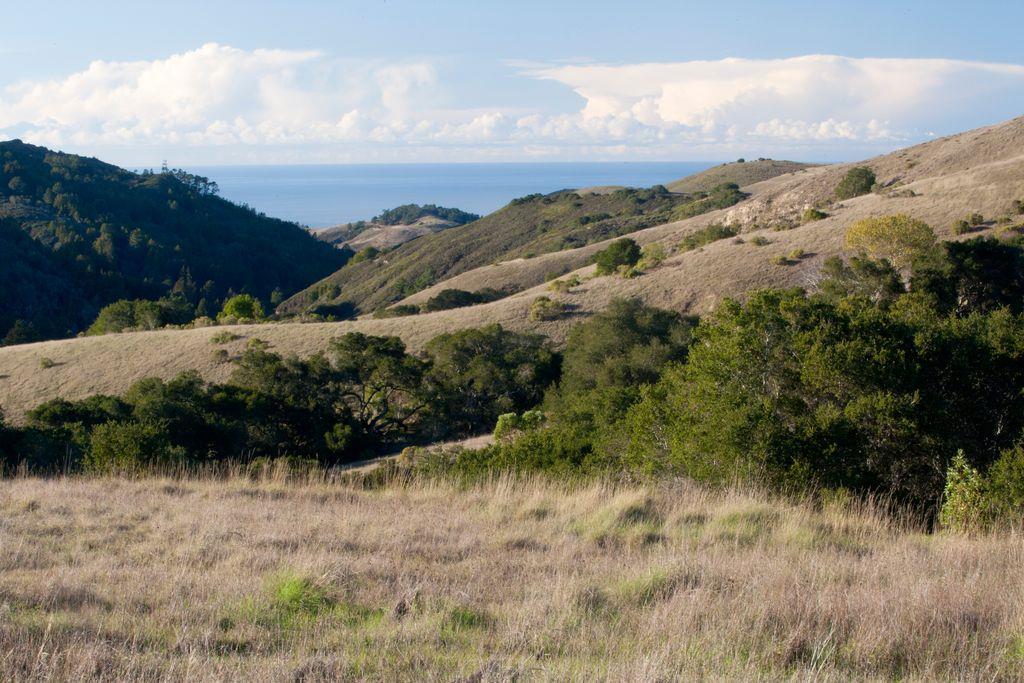 33 Rancho San Carlos RD, Carmel in Monterey County, CA 93923 Home for Sale