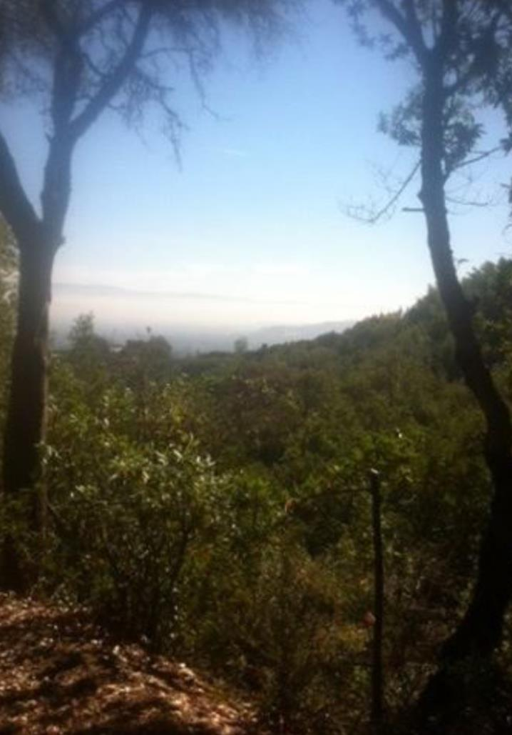 0 Little Brook, Monte Sereno in Santa Clara County, CA 95030 Home for Sale