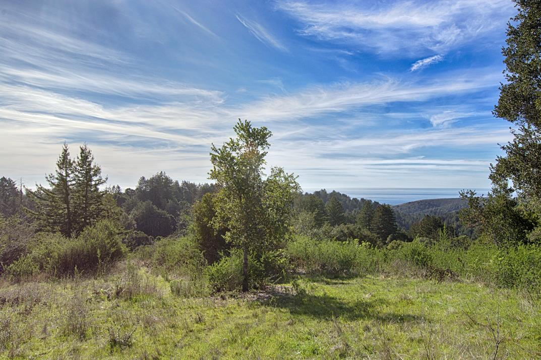 2285 BACK RANCH RD, SANTA CRUZ, CA 95060  Photo 11