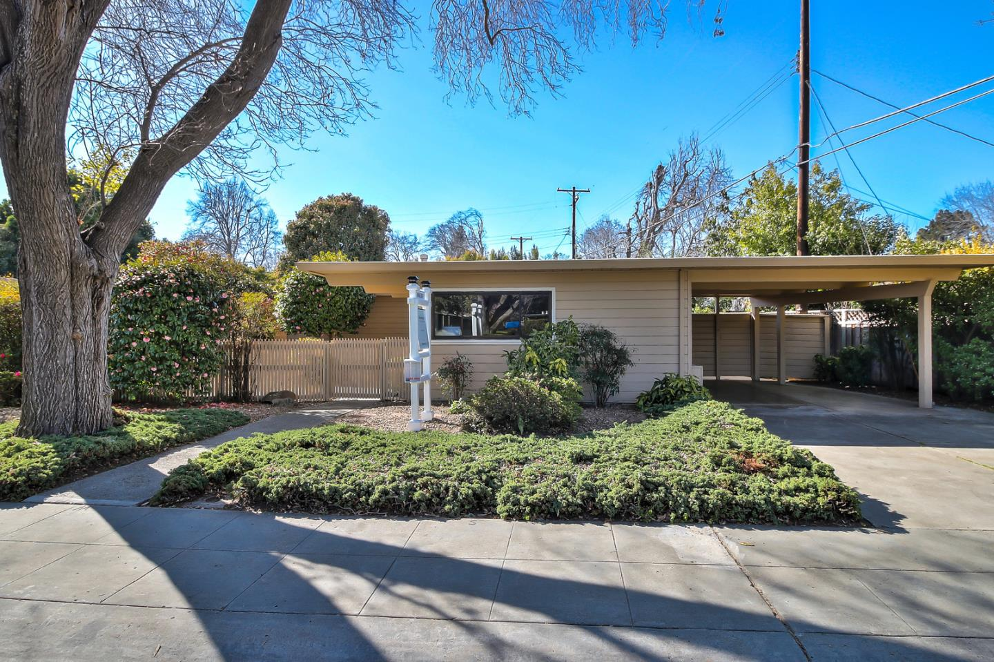 1914 Channing AVE, PALO ALTO, California