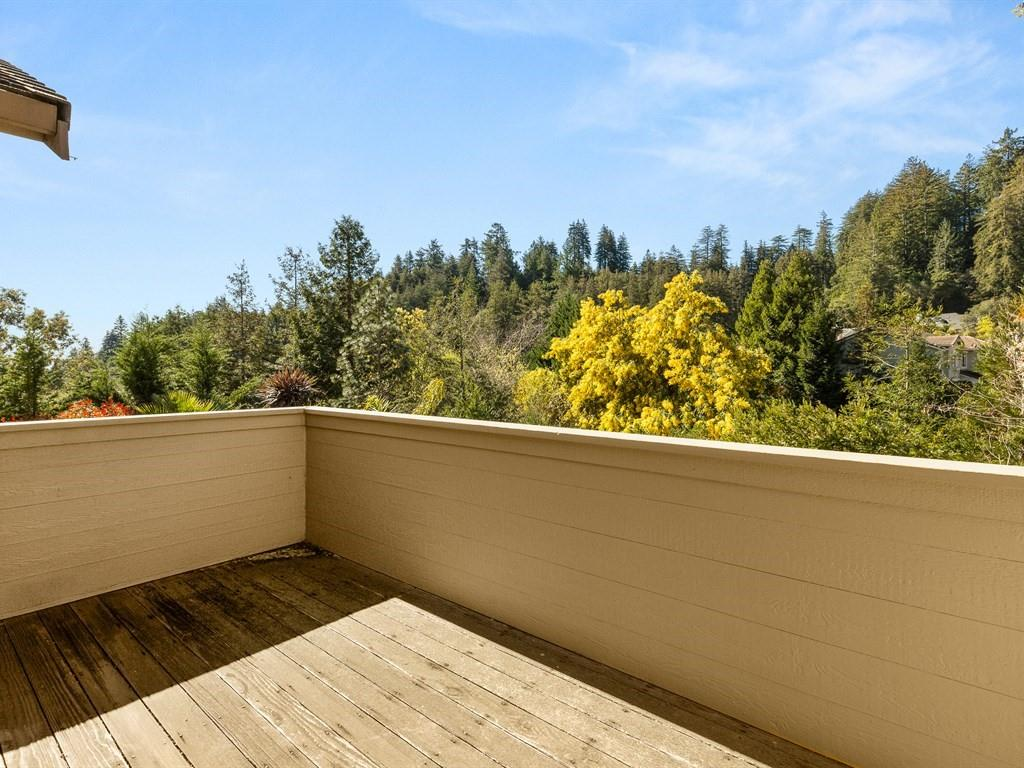 163 SILVERWOOD DR, SCOTTS VALLEY, CA 95066  Photo 20