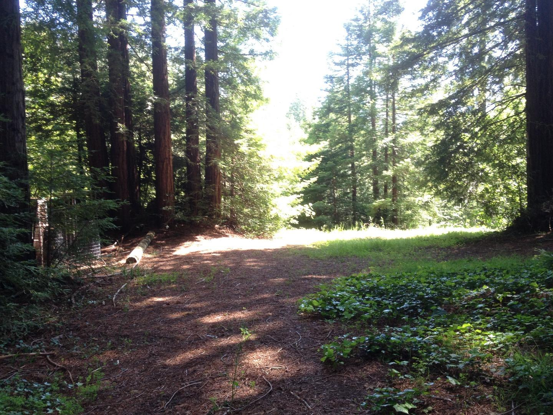 2020 Eureka Canyon Road Corralitos, CA 95076 - MLS #: ML81704719