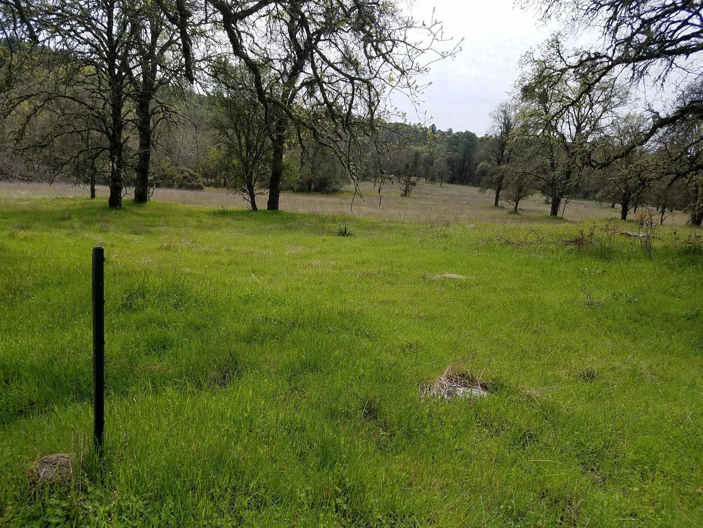 3600 Deer Valley Road Rescue, CA 95672 - MLS #: ML81708895