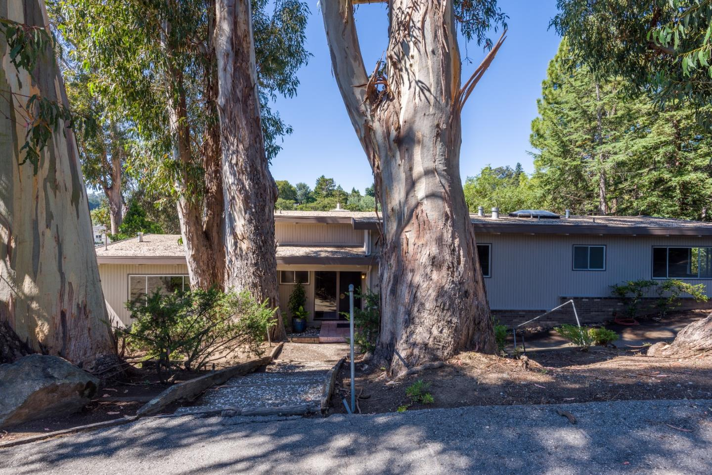 143 Los Robles DR, Burlingame, California