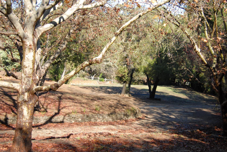 308 Olive Hill Lane Woodside, CA 94062 - MLS #: ML81714200