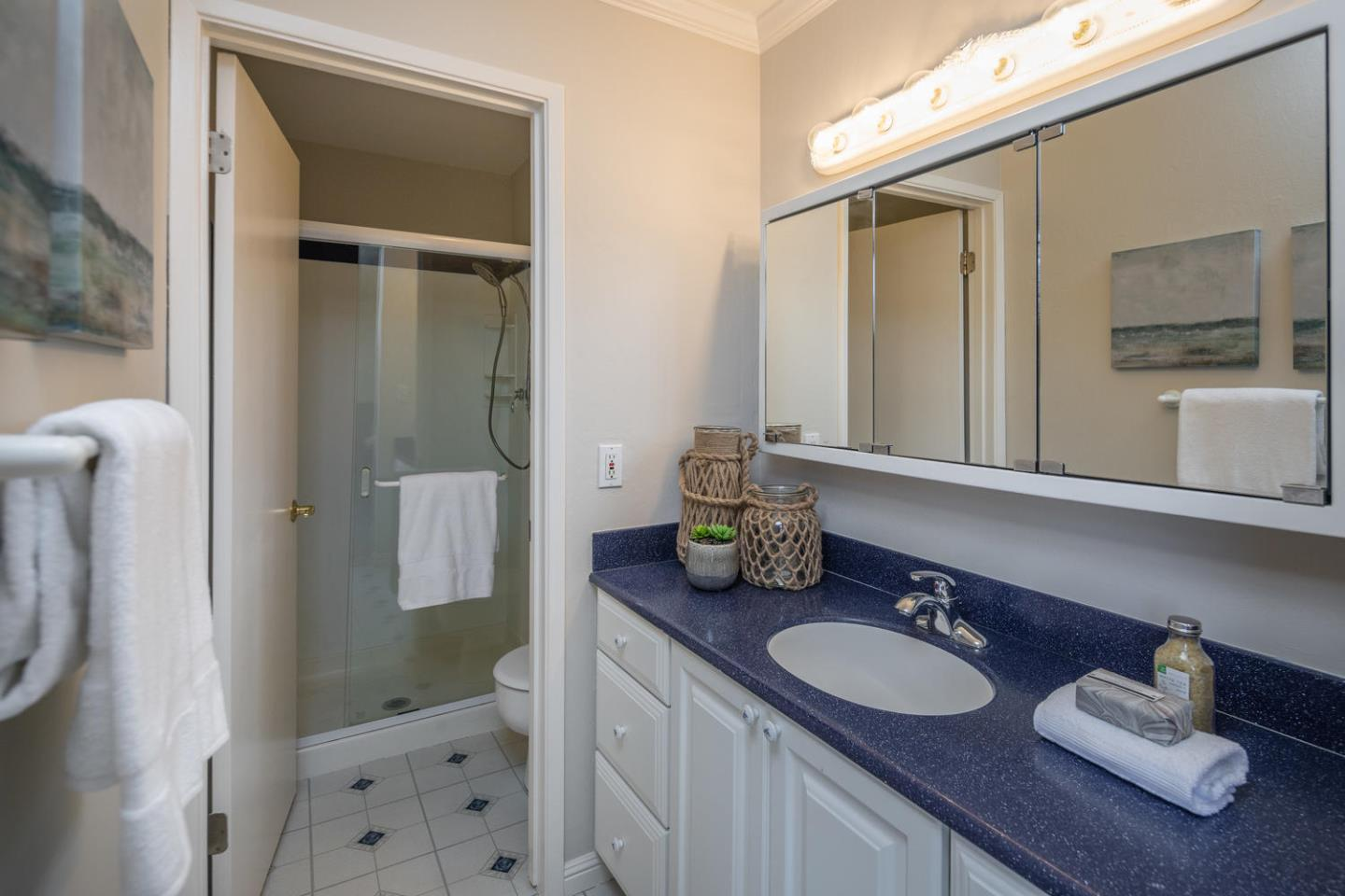 823 Peary Lane Foster City, CA 94404 - MLS #: ML81716650