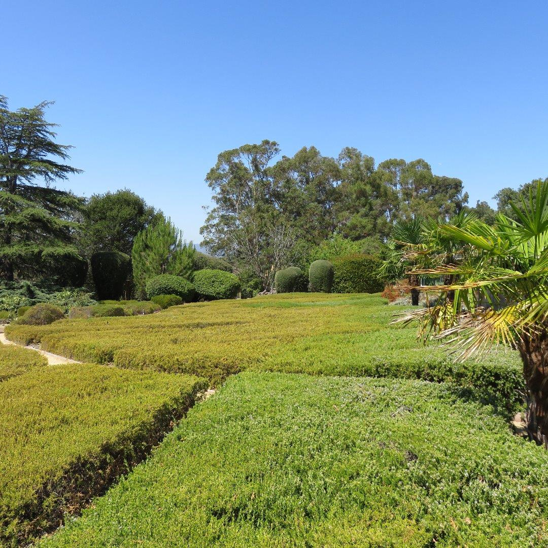 2250 Old Page Mill Road Palo Alto, CA 94304 - MLS #: ML81716740