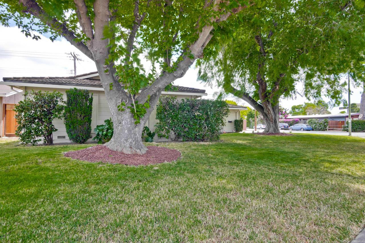 1649 Kingman Avenue San Jose, CA 95128 - MLS #: ML81717294
