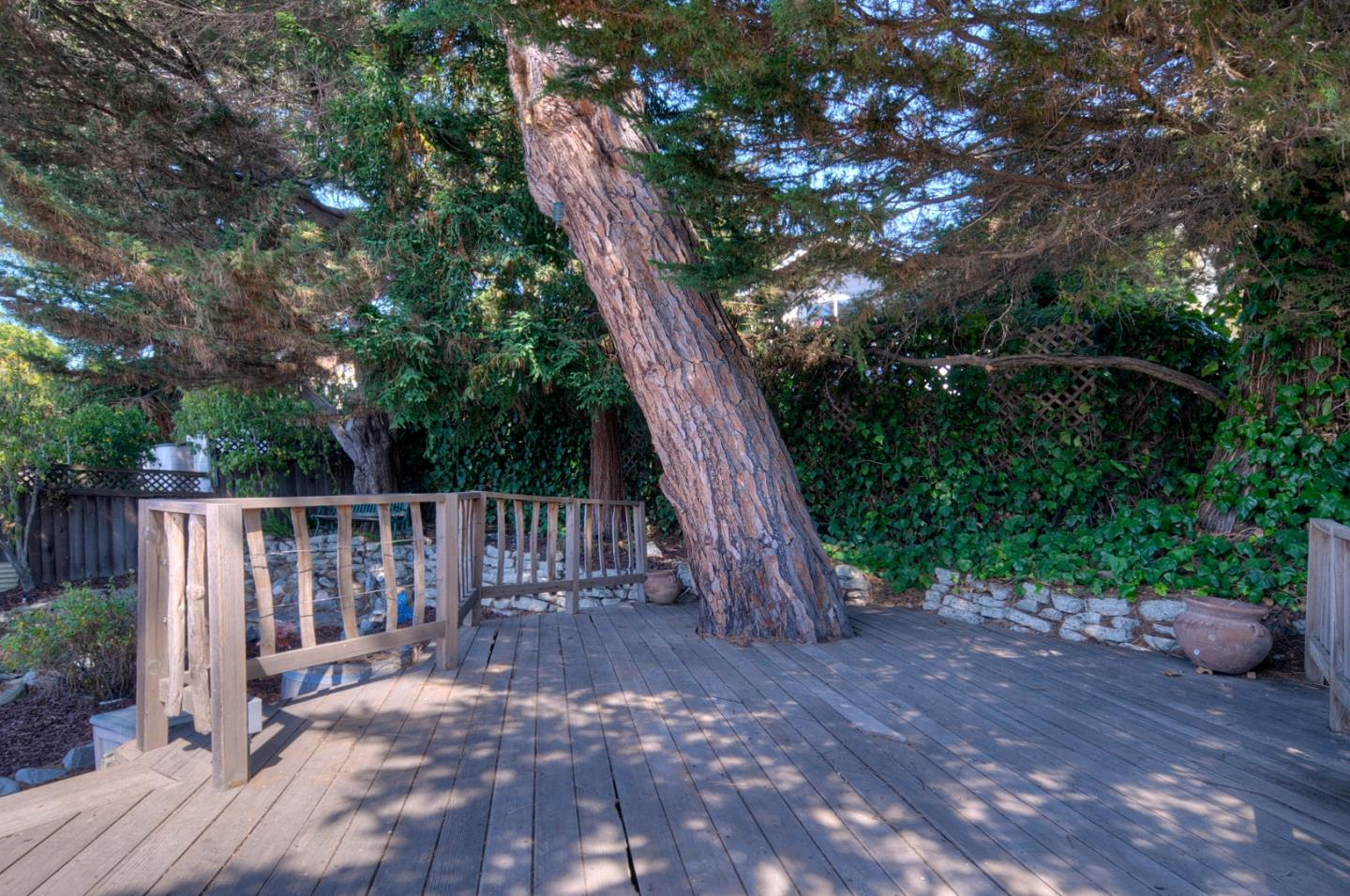 148 Palm Avenue San Carlos, CA 94070 - MLS #: ML81722381