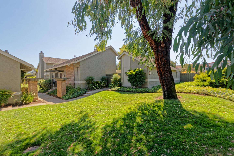 1339 Star Bush Ln, San Jose, CA 95118
