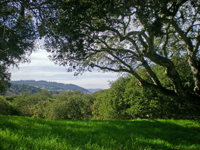 Detail Gallery Image 1 of 14 For 8345 Vista Monterra (lot 151), Monterey, CA 93940 - – Beds | – Baths