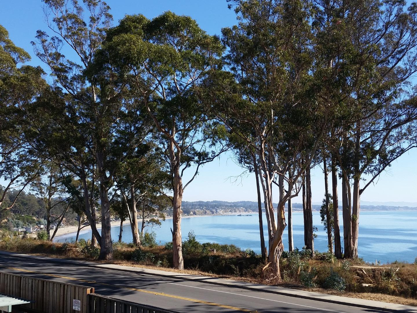 Detail Gallery Image 1 of 1 For 815 Balboa Ave #204, Capitola, CA, 95010 - 2 Beds | 1/1 Baths