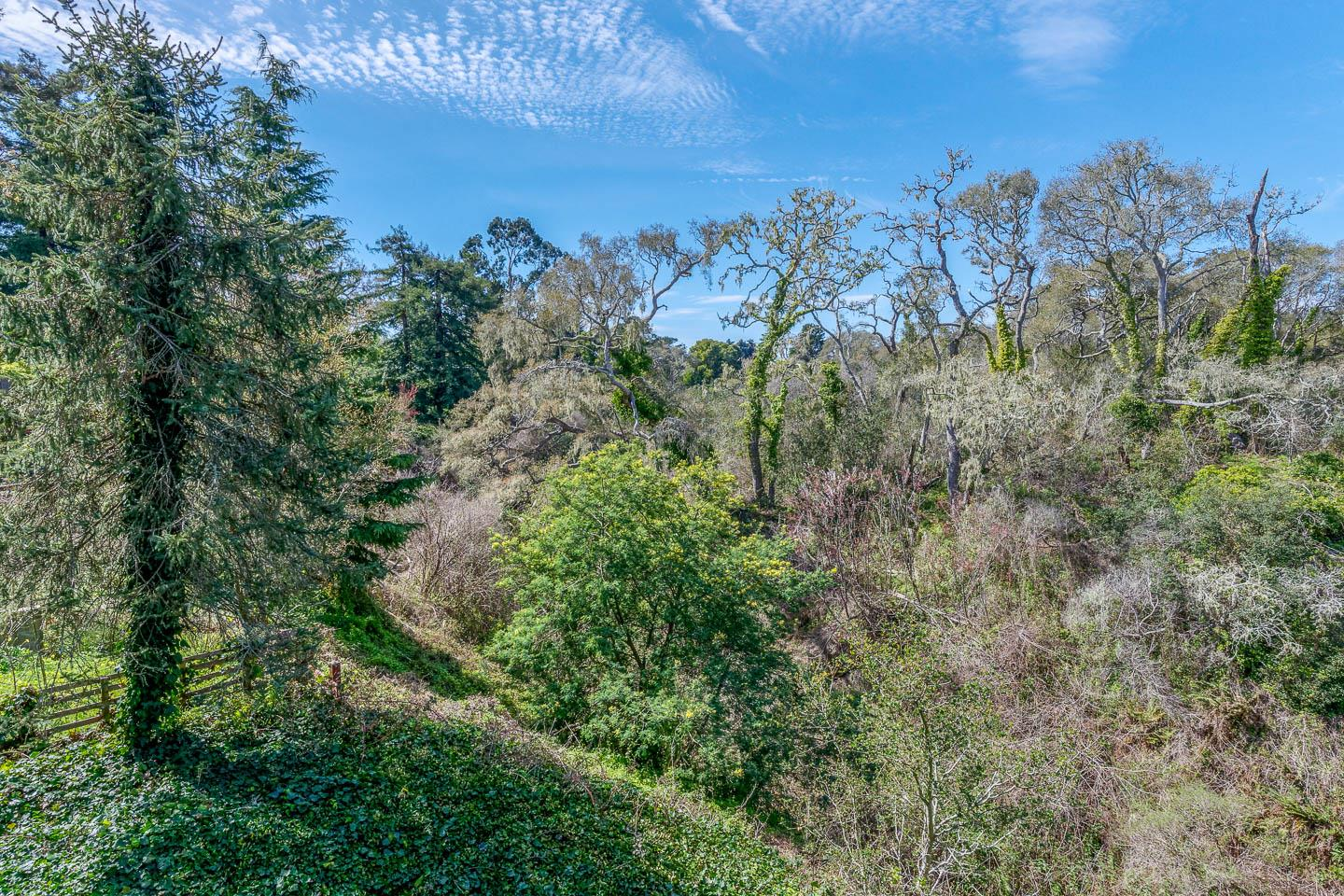 Don't miss the opportunity to own this 2 Bedroom 2 bathroom home plus a  bonus room with separate entrance in quiet Seacliff neighborhood. Perfect for first time buyer or someone looking for a seaside getaway. Close to beach,shopping and more. This cozy home features hardwood floors and greenbelt views.The property sits on a 8688 sqt lot. Ready for a remodel expansion? If your looking to get into the Santa Cruz real estate market this would be a great place to start.