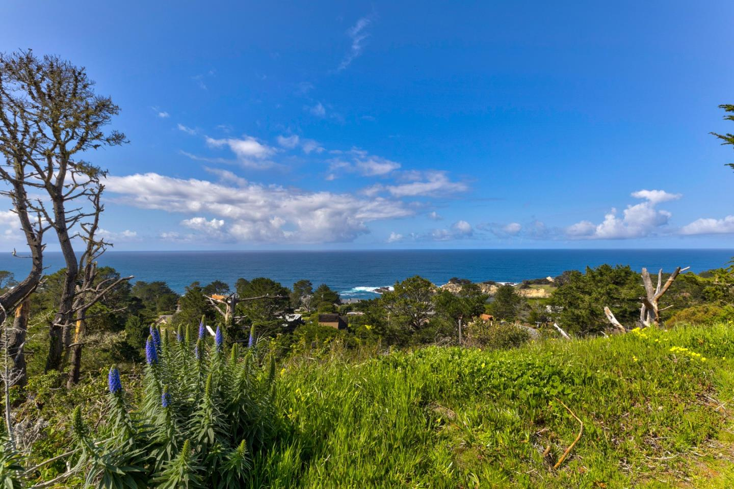 Detail Gallery Image 1 of 10 For 0 San Remo Rd, Carmel,  CA 93923 - – Beds | – Baths
