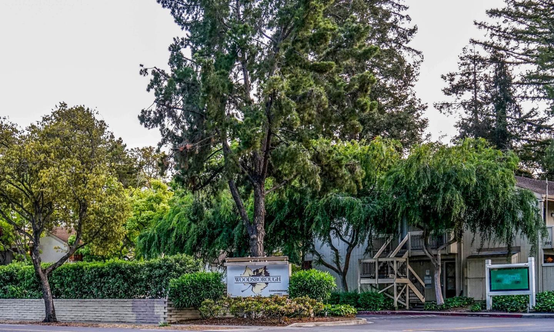 Detail Gallery Image 1 of 1 For 980 Kiely Blvd #317, Santa Clara, CA, 95051 - 1 Beds | 1 Baths