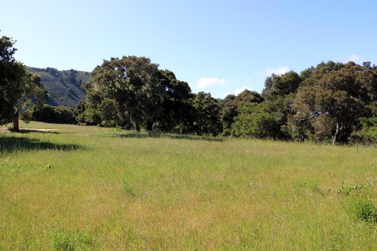 9 Wild Boar Run Carmel, CA 93923
