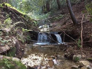 24140 Booker Creek Rd Saratoga, CA 95070