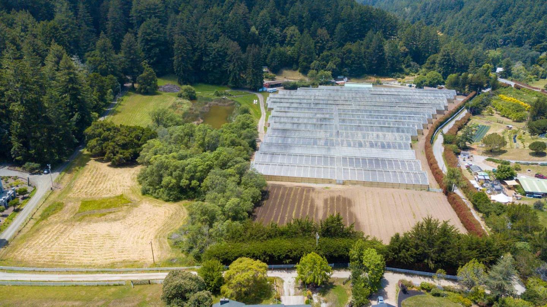 California Homes for Sale | David Lyng Real Estate