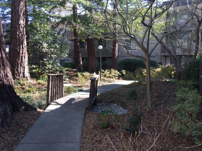 Photo of  2321 Shelter Creek Lane San Bruno 94066