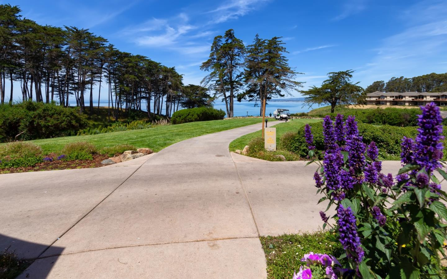 Detail Gallery Image 1 of 1 For 109 Seascape Resort Dr, Aptos, CA 95003 - 1 Beds | 1 Baths