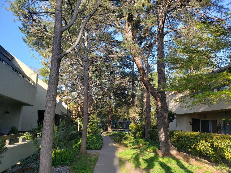 283 Tradewinds DR 8 San Jose, CA 95123