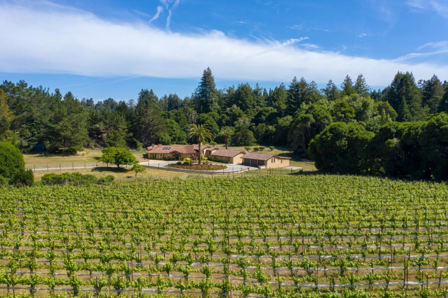 Gorgeous 5.25 acre vineyard estate. This single level Rancher is located just minutes from Aptos Village, beaches & surfing, as well as the best mountain biking and hiking right outside your door! Travertine floors, vaulted ceilings, abundant natural lighting, & unique architecture greet you upon entering. Formal dining & living area w/ stone fireplace surround. Elegant kitchen offers open beam ceiling, top of the line appliances, granite counters & built in wine cooler! Informal dining flows easily into the family rm. Spacious master suite w/ a large walk in closet & open en suite bathroom. 2nd master suite in the opposite bedroom wing. Plenty of room for entertaining inside and out! Detached 1,460 sqft 3 car garage & workshop w/ 3 additional car stalls for equipment. All of this as well as a 2 acre dry farmed Pinot Noir vineyard, that produces top quality wine for 5 star & Michelin rated restaurants. Don't miss this opportunity to have your own estate in a private & gated location!