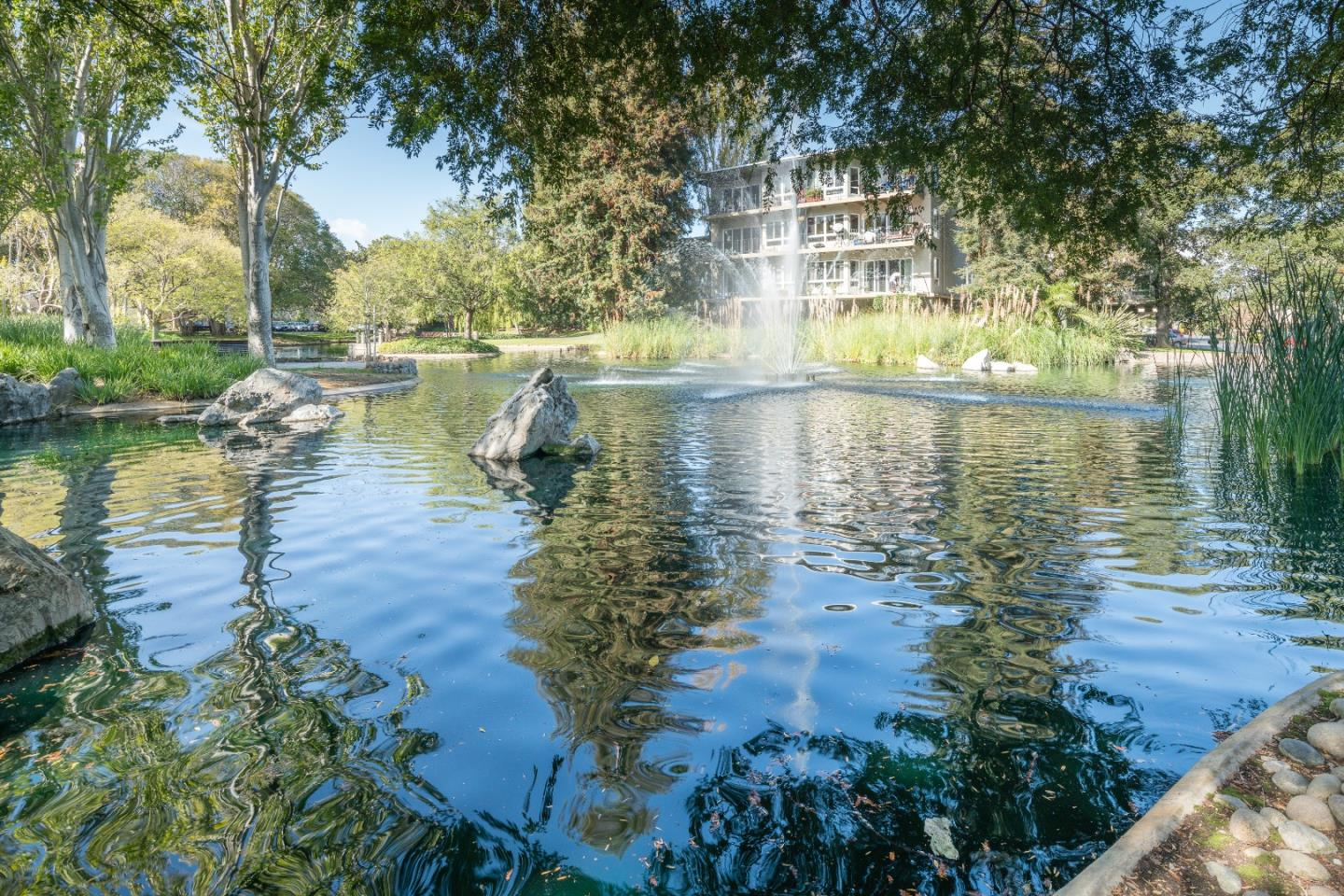 Detail Gallery Image 1 of 1 For 800 N Delaware St #215, San Mateo, CA 94401 - 1 Beds | 1 Baths