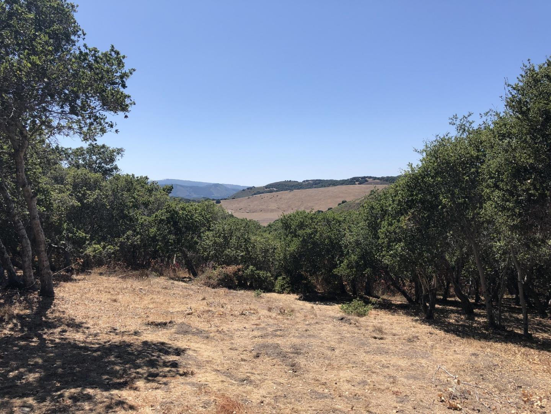 11721 Camino Escondido Road Carmel Valley, CA 93924
