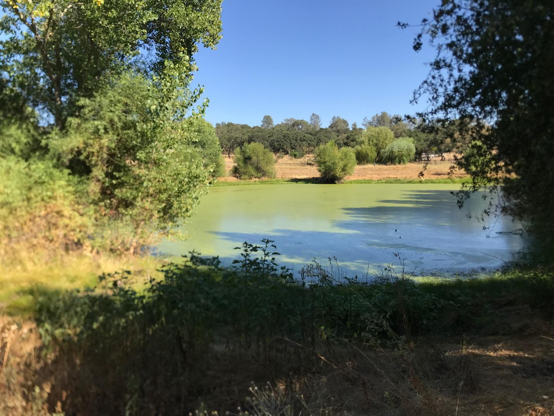 5185 Oak Hollow Road Valley Springs, CA 95252
