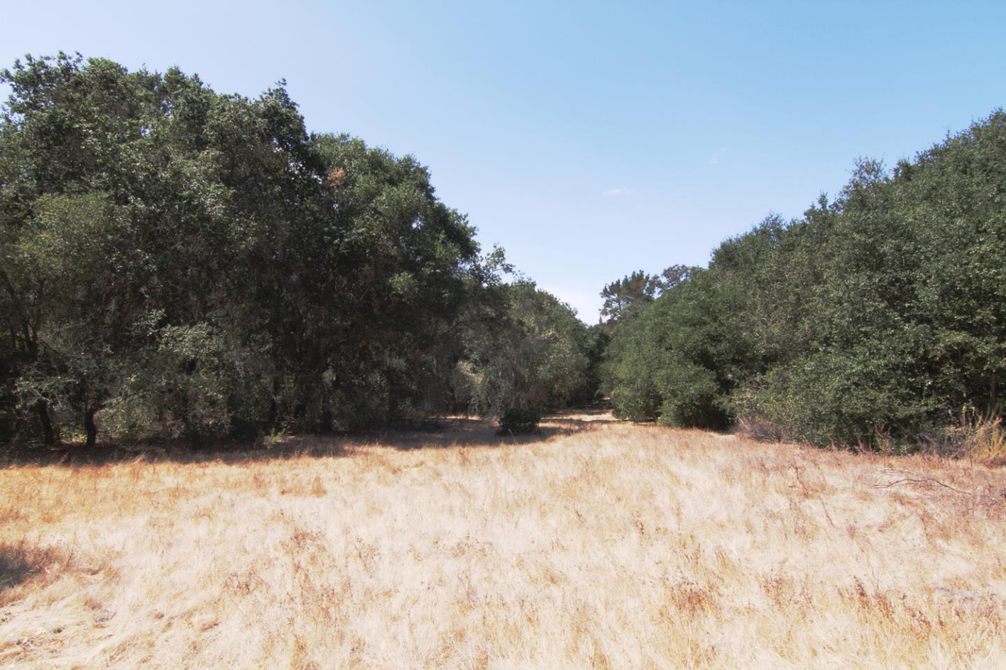 Corral de Tierra Road Other - See Remarks, CA 93908