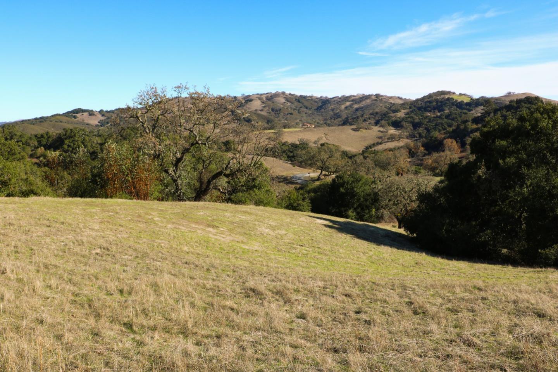 5 Vasquez Trail Carmel, CA 93923