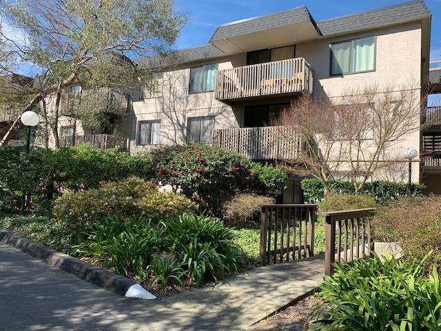 Detail Gallery Image 1 of 24 For 7336 Shelter Creek Ln #7336, San Bruno, CA 94066 - 1 Beds | 1 Baths