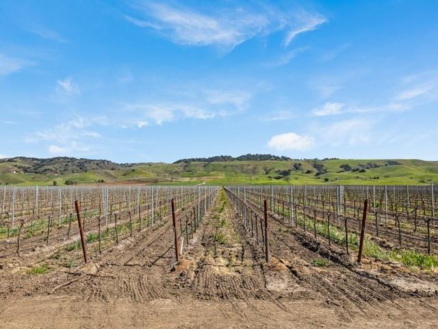 3385 Pacheco Pass HWY Gilroy, CA 95020