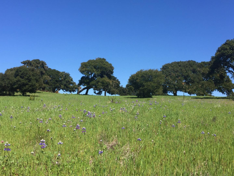 Detail Gallery Image 1 of 11 For 8315 Vista Monterra, Monterey,  CA 93940 - – Beds | – Baths