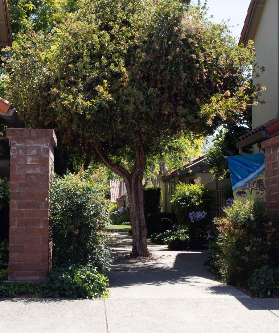 1664 Calle Santiago Pleasanton, CA 94566