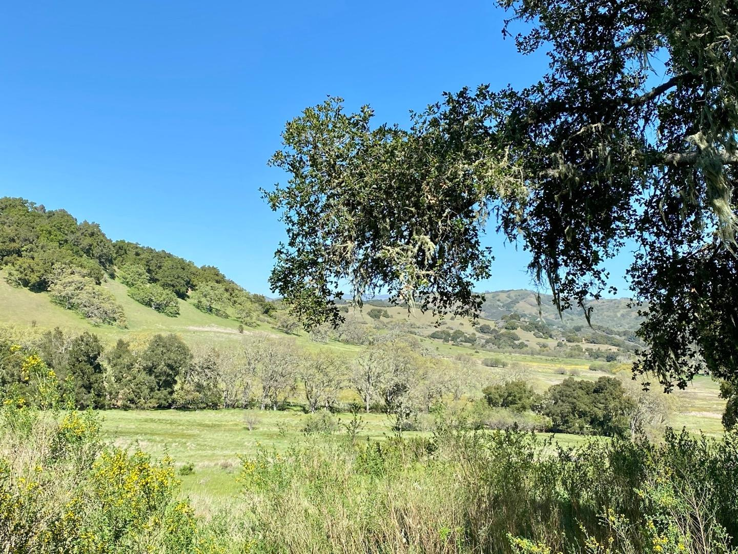 Detail Gallery Image 1 of 1 For 3 Wild Turkey Run, Carmel Valley,  CA 93923 - – Beds | – Baths