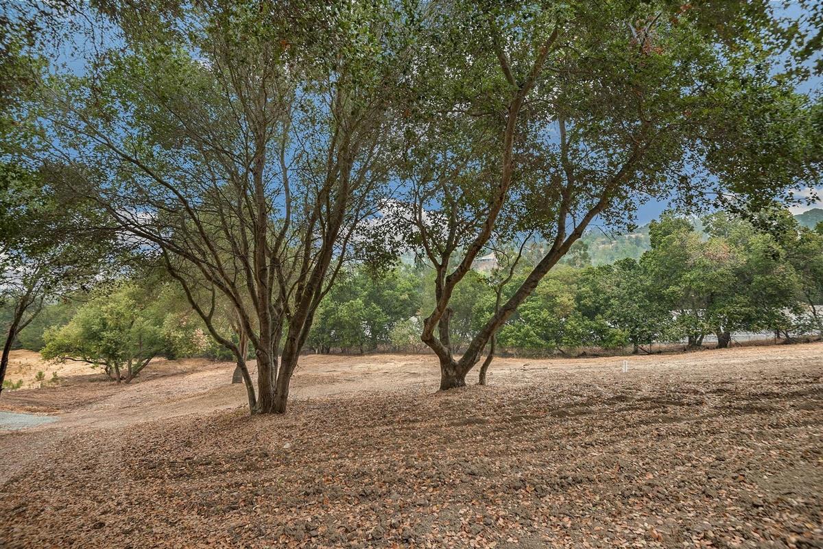 00 Maria CT Los Altos Hills CA 94022