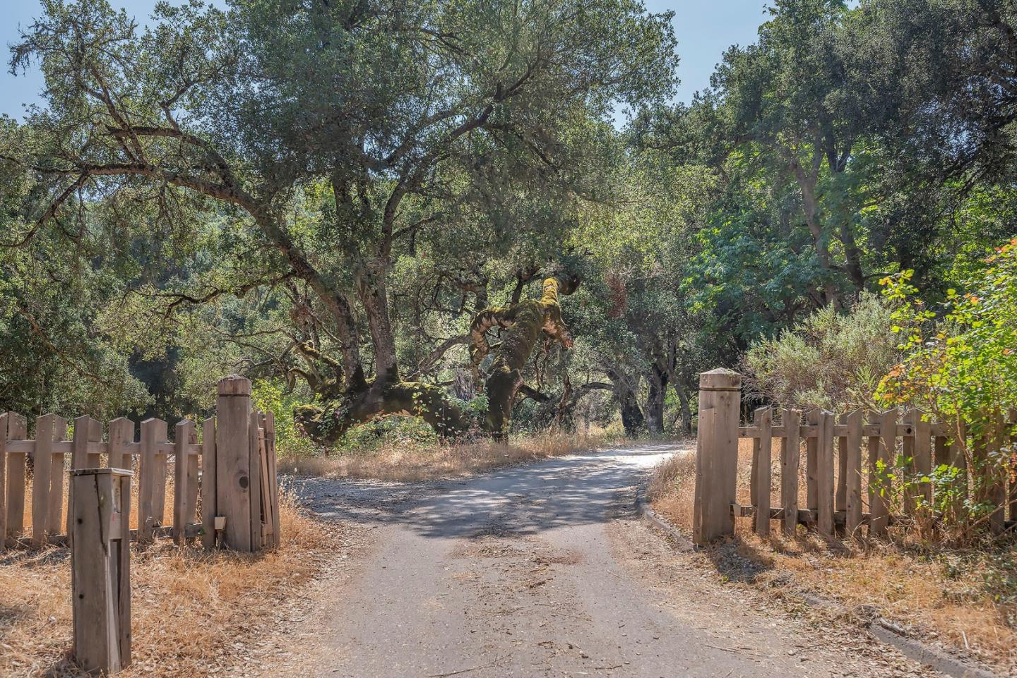 Detail Gallery Image 1 of 7 For 34180 Robinson Canyon Rd, Carmel Valley,  CA 93923 - – Beds | – Baths