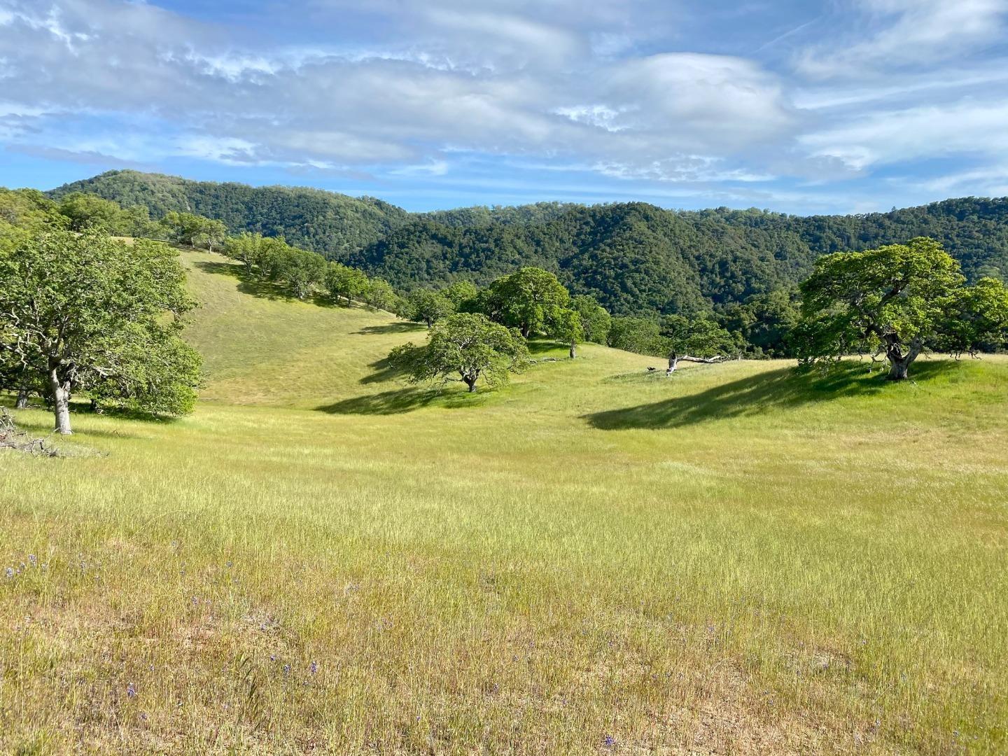 Detail Gallery Image 1 of 13 For 17 Black Mountain Trl, Carmel Valley,  CA 93923 - – Beds   – Baths
