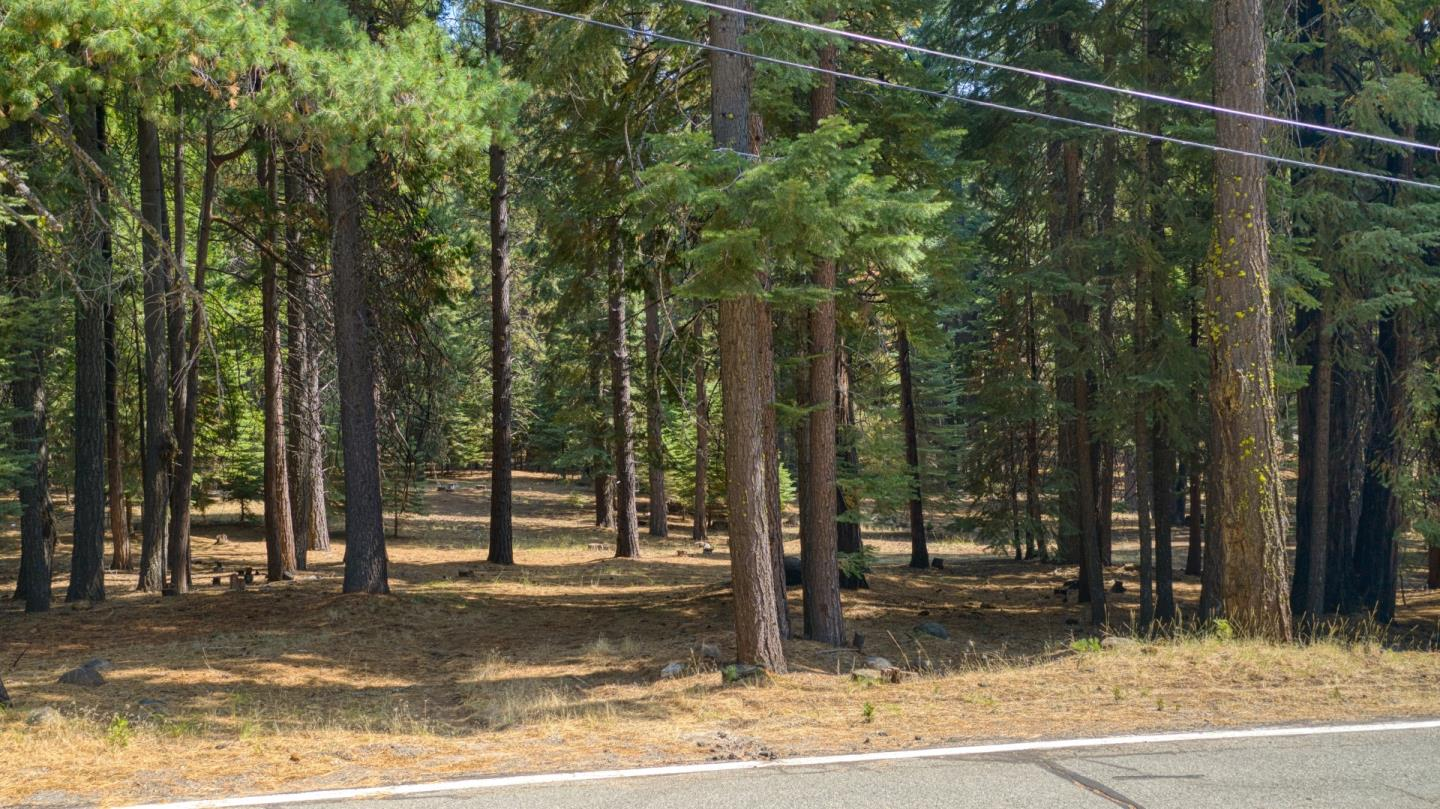 Detail Gallery Image 1 of 8 For 615 Deep Forest Rd, Lake Almanor,  CA 96137 - – Beds | – Baths