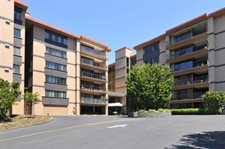 Detail Gallery Image 1 of 14 For 50 Mounds Rd #108,  San Mateo,  CA 94402 - 2 Beds | 2 Baths