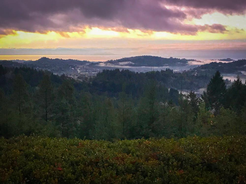 SPECTACULAR VIEWS OF BAY AND THE VALLEY-YOU CAN SEE MOSS LANDING TO MONTEREY. VERY PRIVATE 7+ ACRES WITH GROVES OF REDWOODS. Walls of windows bring the views & nature indoors to each and every room! Beautiful Spanish Hacienda Style home with tile floors, arched doorways, accent tile at entrance to some downstairs rooms. Spacious kitchen has island and breakfast bar, subzero refrigerator, Jennair counter cooktop w/ bbq & griddle. Open kitchen has additional eating area and family area. There are pass through cabinets to the formal dining next door. Cute sun room off kitchen-great for office or plants. French doors from several rooms downstairs step to large aggregate patio & all bedrooms upstairs to enjoy views both inside and out on an adjoining deck. New carpet installed in all bedrooms and entire interior of home is freshly painted. BONUS-Detached 1bedroom/1bath guest quarters approx 200 ex sq ft.- behind 2 car garage. Large courtyard off entrance to the home with central fountain.