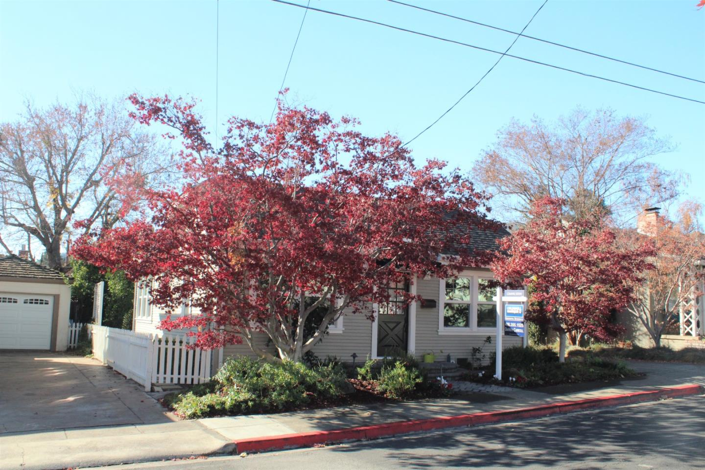 Detail Gallery Image 1 of 1 For 129 Olive St, Los Gatos,  CA 95030 - 2 Beds   1 Baths