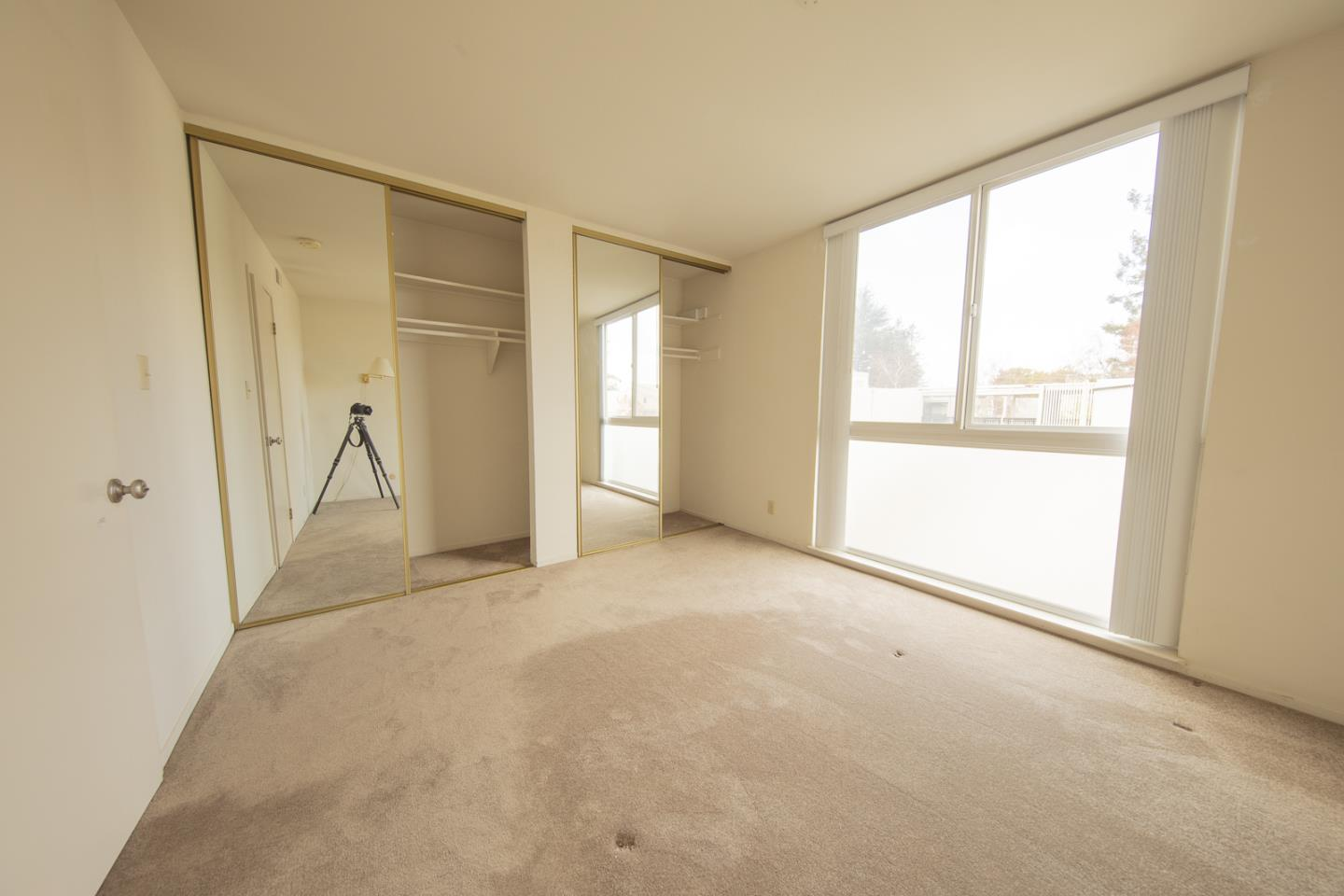 Detail Gallery Image 1 of 13 For 183 Del Medio Ave #312,  Mountain View,  CA 94040 - 1 Beds | 1 Baths