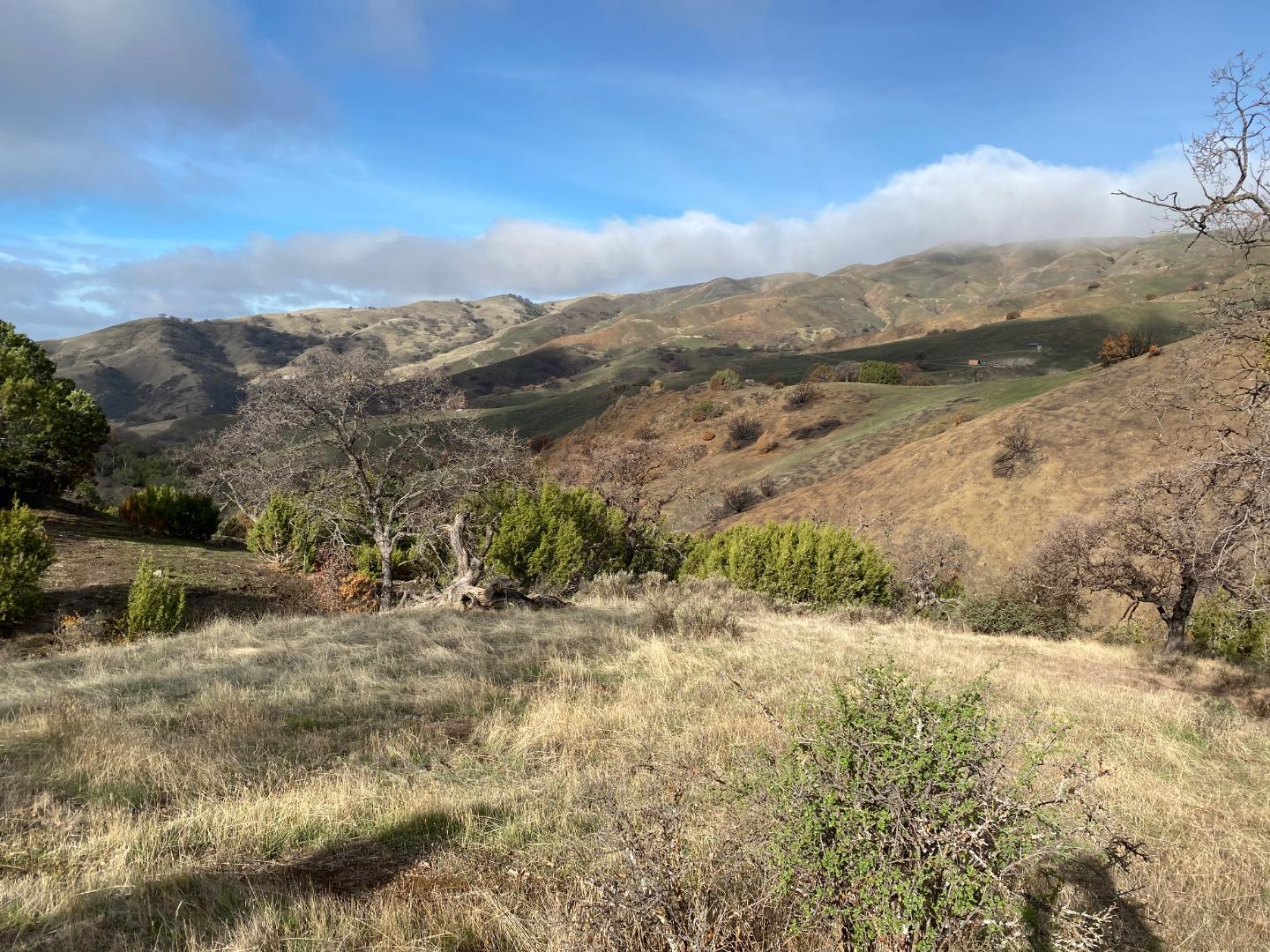 Detail Gallery Image 1 of 9 For Lot 47 Panoche Rd, Paicines,  CA 95043 - – Beds | – Baths