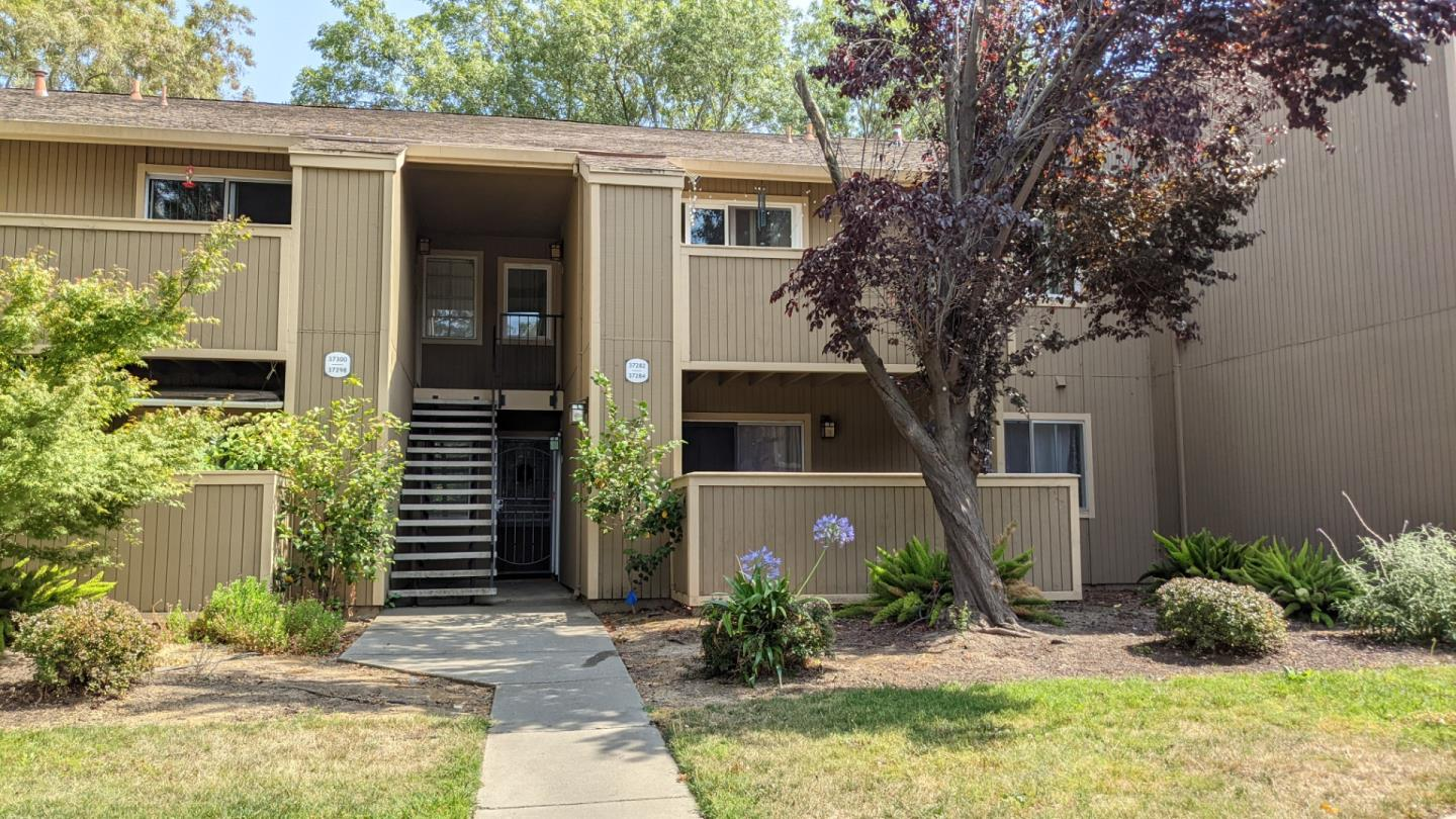 Turnkey, Fully furnished,  move-in ready, first floor 1BR/1BA, situated in quaint and well maintained Baywood Villa complex; larger balcony with ample planting area; easy access to BART, 880 highway and walkable distance to Quarry Lake Trails; fully furnished with brand-new, mid-century inspired furniture; features upgraded laminate wood floors; fresh paint, granite countertops, and updated bathroom; equipped with stainless steel refrigerator, dishwasher and appliances; large walk-in closet, with lots of indoor and outdoor storage space; added entry screen door provides extra ventilation.  Comparatively low HOA fee includes no hidden owner cost and covers gym, pool & spa, clubhouse, water and garbage bills. Excellent American High School attendance.