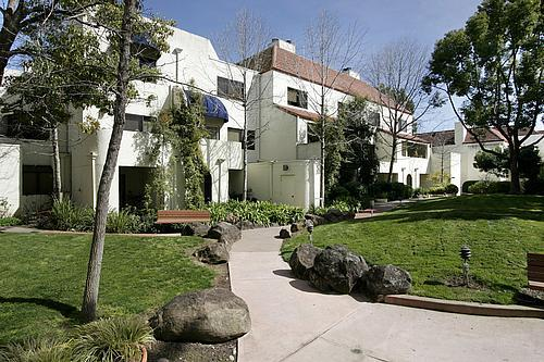 Detail Gallery Image 1 of 32 For California Ave,  Palo Alto,  CA 94306 - 2 Beds   2 Baths